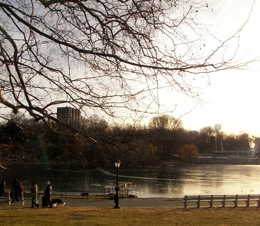 四季折々の美しさと優しさ・・・ セントラルパークへ初詣_b0007805_15544416.jpg