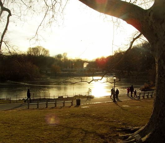 四季折々の美しさと優しさ・・・ セントラルパークへ初詣_b0007805_15563543.jpg