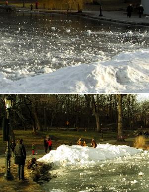 四季折々の美しさと優しさ・・・ セントラルパークへ初詣_b0007805_229144.jpg