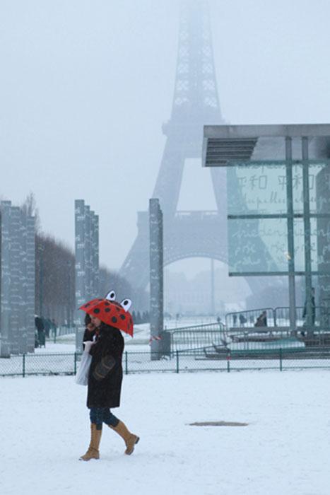 2009/01/06 パリに雪が降りました。_f0034922_23384035.jpg