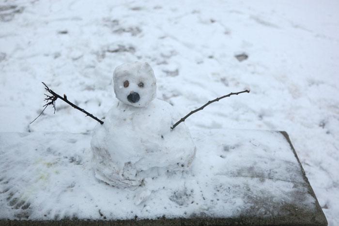 2009/01/06 パリに雪が降りました。_f0034922_23392011.jpg