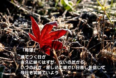b0044724_18262073.jpg