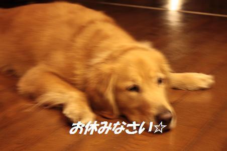 f0114128_1615617.jpg