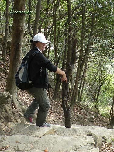 深セン 2009年初登山(梧桐山)と写真_b0075737_23222593.jpg