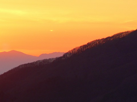 大平山へ_d0010073_19481317.jpg