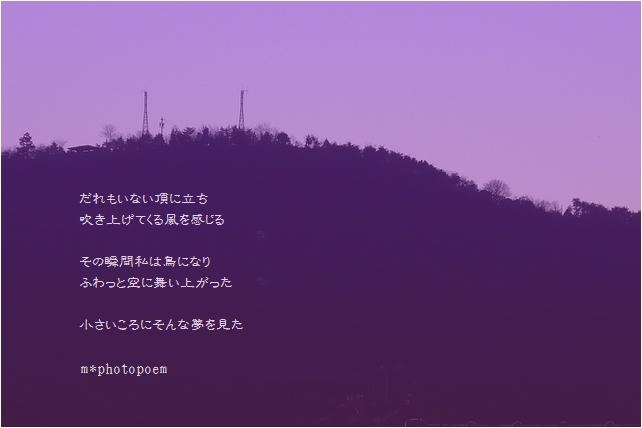 b0154475_23232497.jpg
