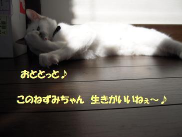 c0139488_15441381.jpg