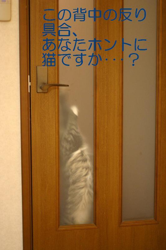 f0141800_23364054.jpg