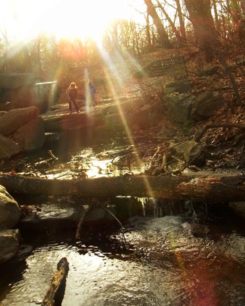 セントラルパークの滝エリアで新年のリフレッシュ_b0007805_12104098.jpg