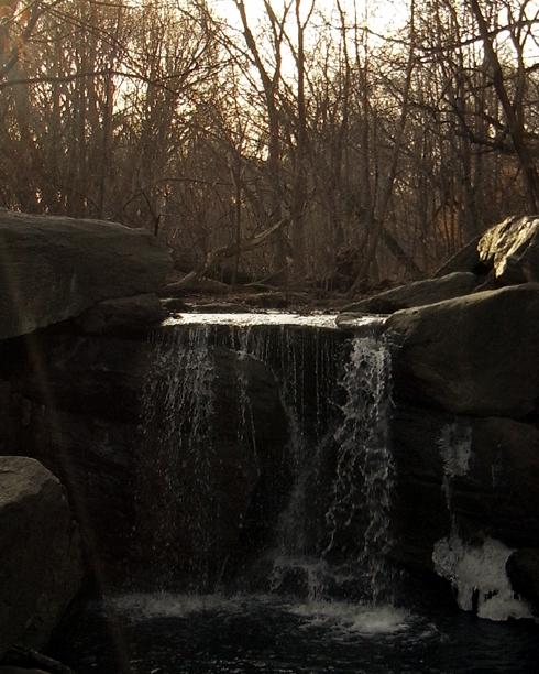 セントラルパークの滝エリアで新年のリフレッシュ_b0007805_1284853.jpg