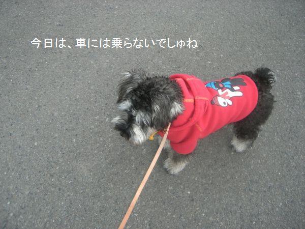 f0197317_18535741.jpg