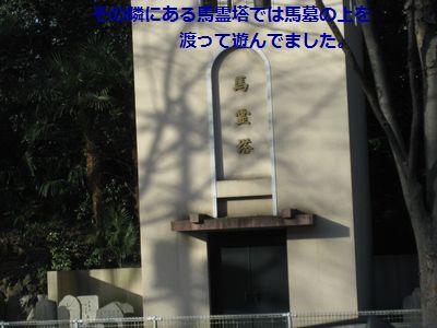 b0148945_19511744.jpg
