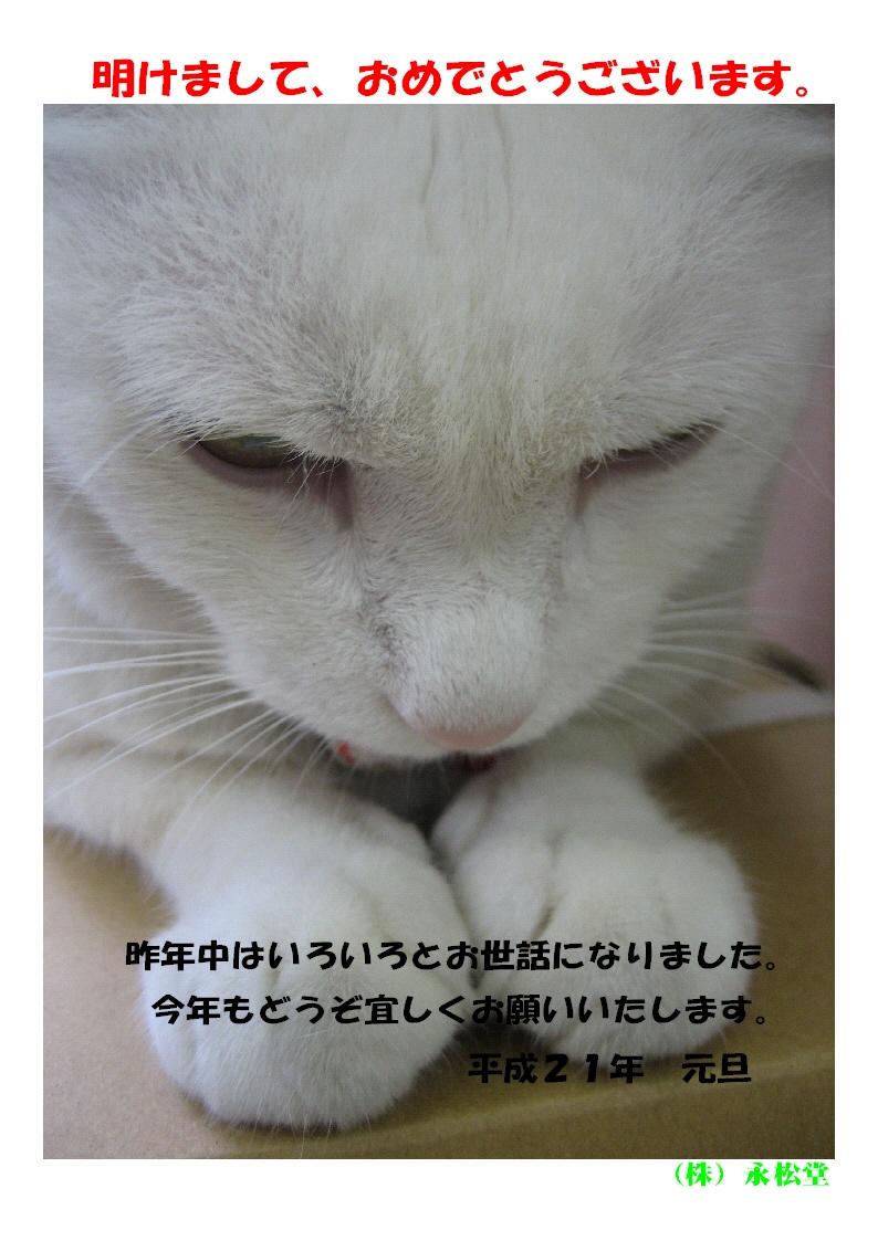 b0151490_1753868.jpg