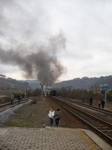 村に蒸気機関車がやって来た!_f0106597_23334476.jpg