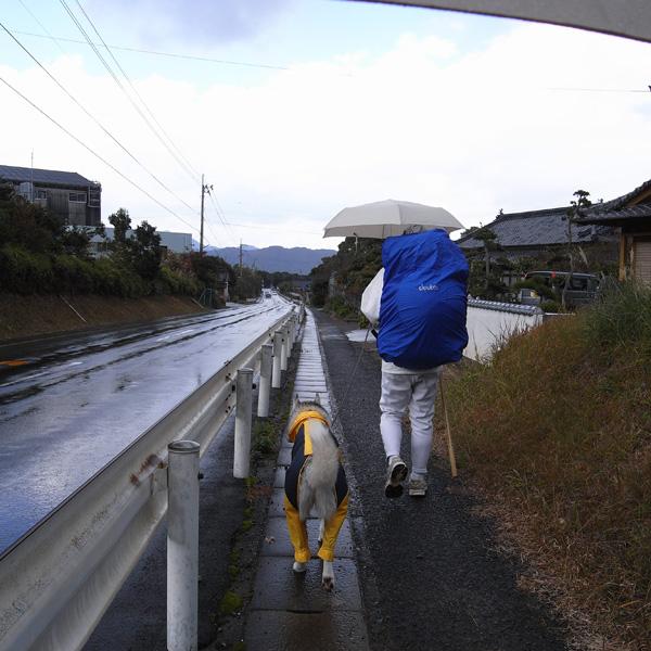 11月28日 おへんろ18日め by GX100_c0049299_13574830.jpg