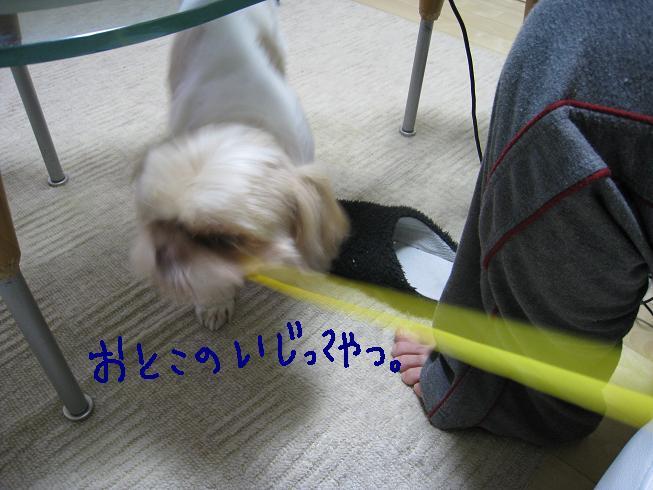 f0195809_034562.jpg