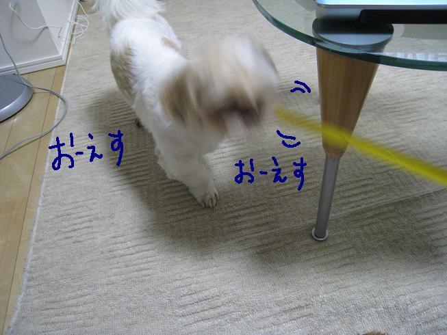 f0195809_03866.jpg