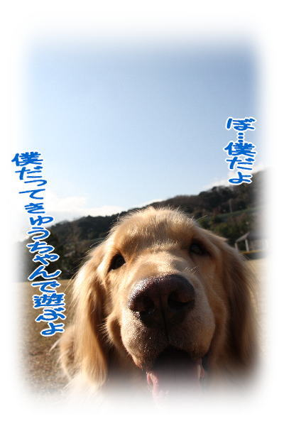 f0109418_5902.jpg