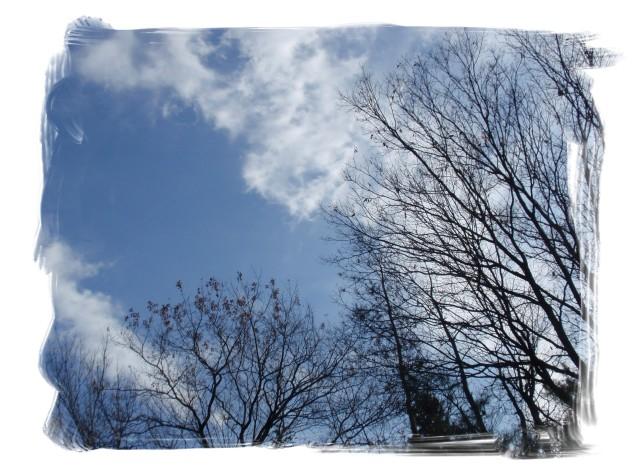 青空日和_c0026824_15391481.jpg