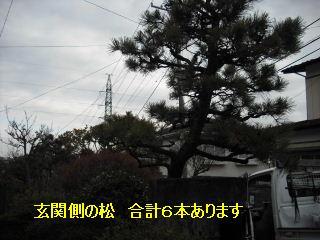 f0031037_1942422.jpg