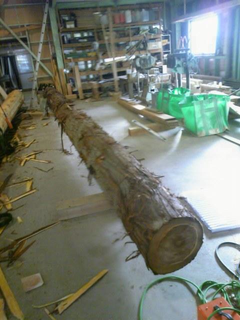 杉の丸太_c0170940_2054363.jpg