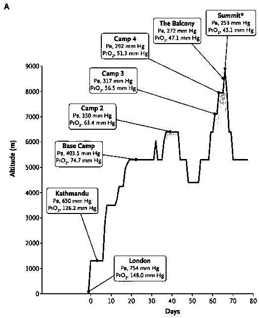 エベレスト山頂のヒトの動脈酸素分圧・炭酸ガス分圧_a0007242_8595717.jpg