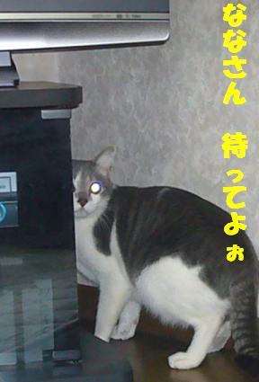 f0002743_10113637.jpg