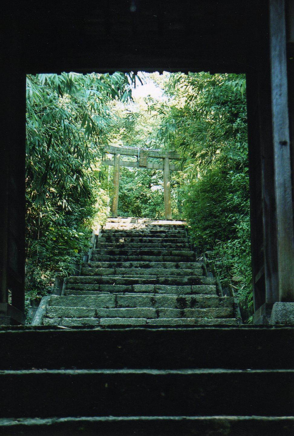 直島へ ジェームズ・タレル×安藤忠雄 南寺_e0126063_1719593.jpg