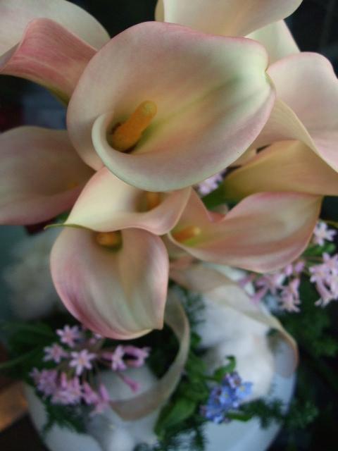 オークリーフ(カラー・ハーモニーと綿と草花のアレンジメント)_f0049672_13285184.jpg