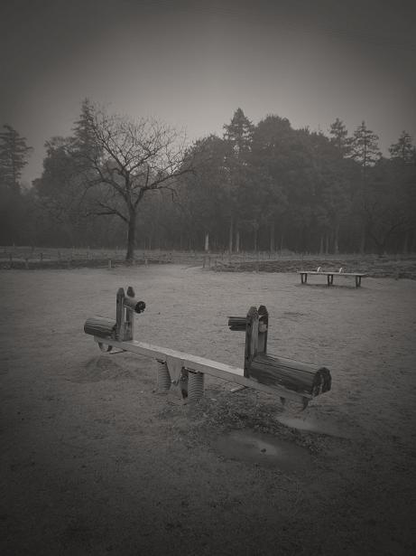 雨の日の公園_f0155808_842697.jpg