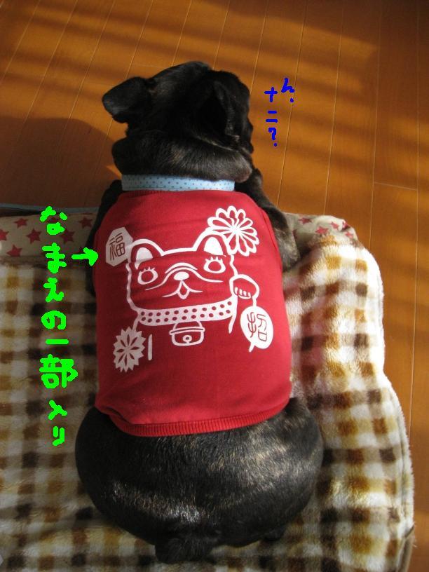 c0113109_0105385.jpg