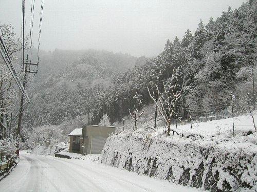 初雪と、買いもの。_b0157216_18175240.jpg