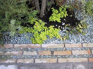 緑化石洗い出しのオリジナルバリエーション_e0010418_17112195.jpg