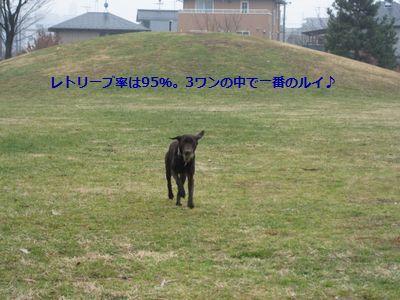 b0148945_15155599.jpg