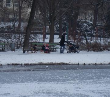 ひとまずこの厳冬も終わりらしいです。_c0180686_17165621.jpg
