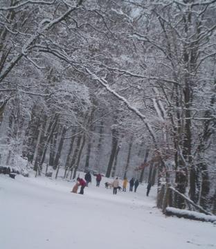 ひとまずこの厳冬も終わりらしいです。_c0180686_17475412.jpg