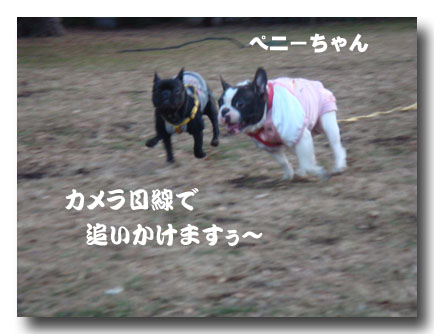 b0134197_1593068.jpg