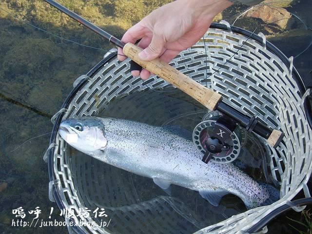 初釣り&フライトラキンプラ_c0106128_0345783.jpg