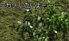 b0128058_104137100.jpg