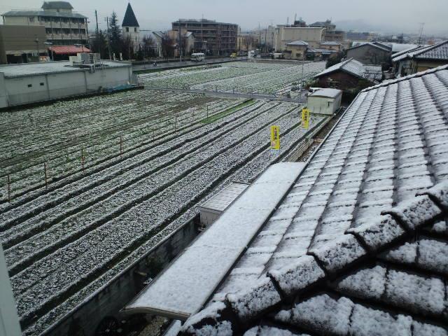 雪景色_d0113681_10194739.jpg