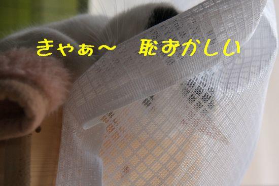 f0197682_20403150.jpg