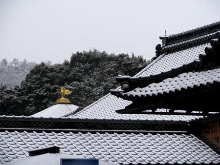 金閣寺に雪_e0048413_12654100.jpg