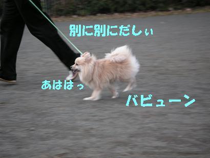 c0179136_3254337.jpg