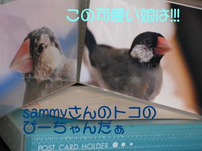 b0158061_20561996.jpg