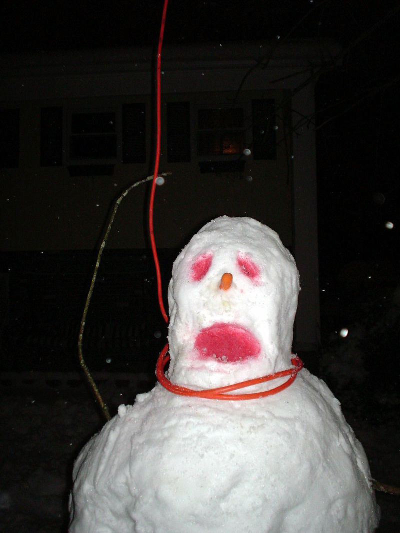 雪・・・・_c0154671_0273593.jpg