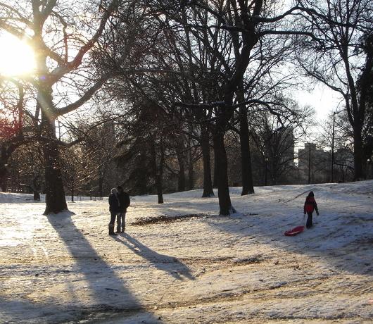 雪のセントラルパーク名物 ソリ_b0007805_15283223.jpg