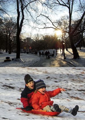 雪のセントラルパーク名物 ソリ_b0007805_15333647.jpg