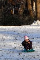 雪のセントラルパーク名物 ソリ_b0007805_1693592.jpg