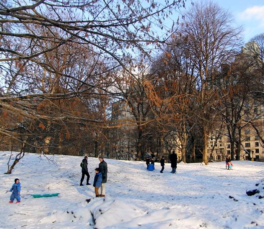 雪のセントラルパーク名物 ソリ_b0007805_22584021.jpg