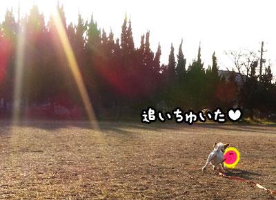 f0129214_118836.jpg